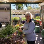 Julie-Campbell-STEPS-Nursery-volunteer-cutting-plants-in-shed